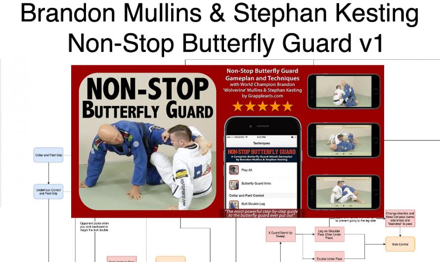 Brandon Mullins & Stephan Kesting – Non-Stop Butterfly Guard Flowchart v1